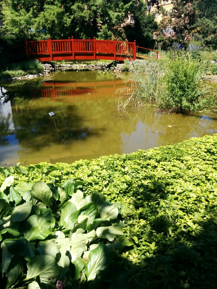 Zagreb Botanical Garden -  Unique things to do in Zagreb