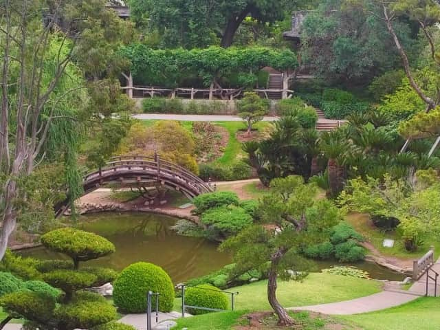 Japanese Garden - The Huntington