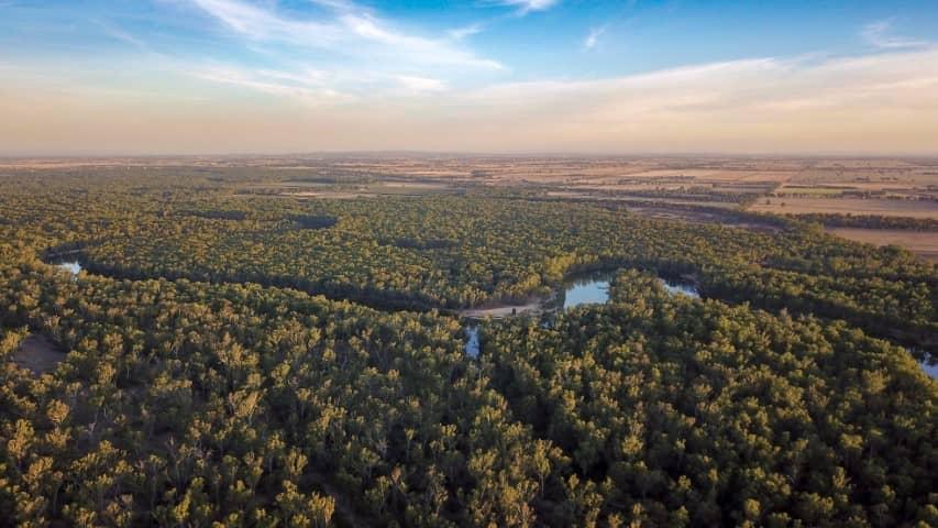 Murray River, Australia - Drone image