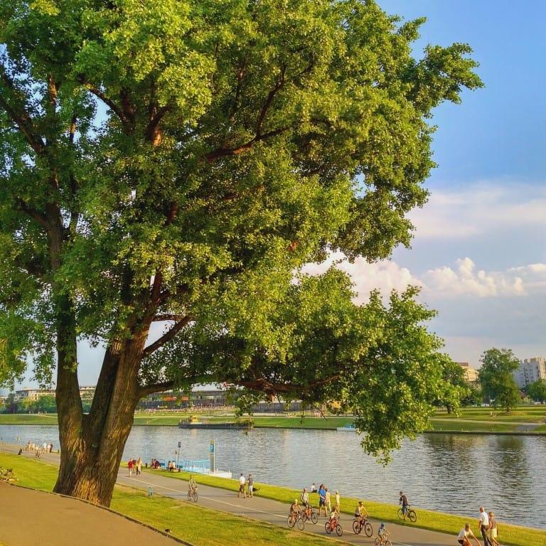 Vistula River Krakow