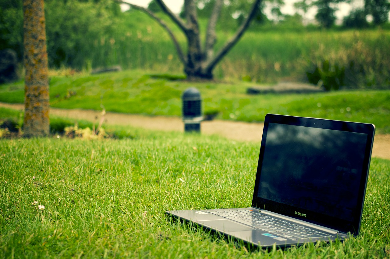 laptop in the park