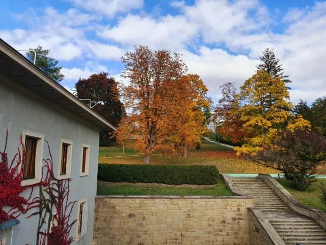 Brno Stiassni Villa - House and Garden