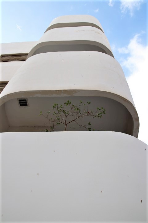 Bruno House in Tel Aviv - Bauhaus style architecture