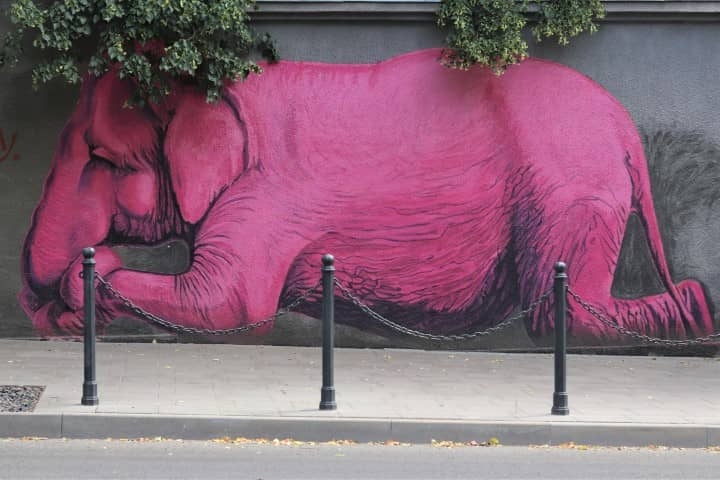 The Pink Elephant - Kaunas Street Art