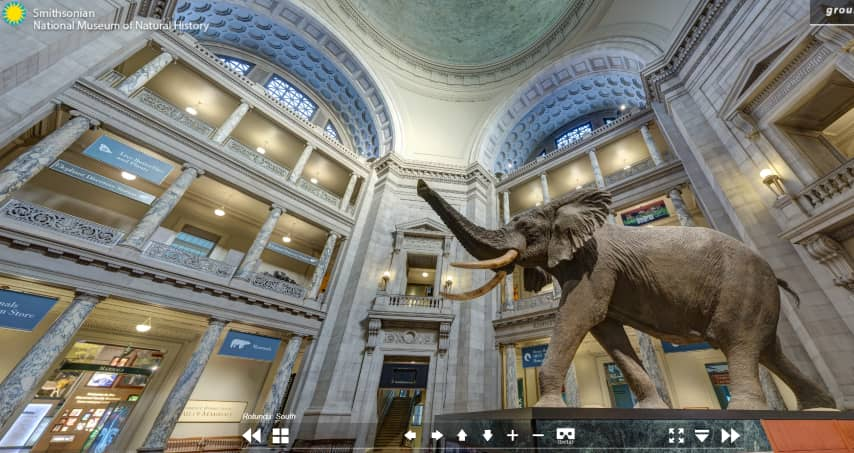 The Smithsonian Institution - From the virtual tour of the National Museum of Natural History