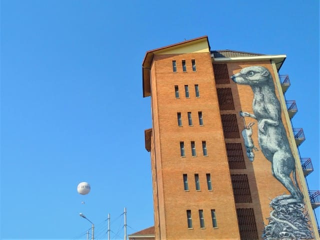Turin Street Art - ROA