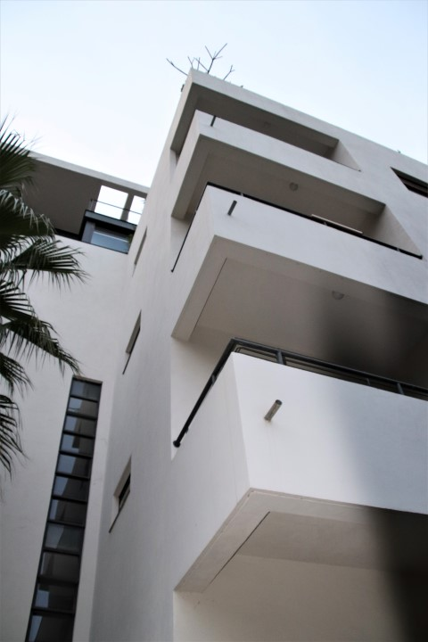 Bauhaus style clean line and clear bu shapes